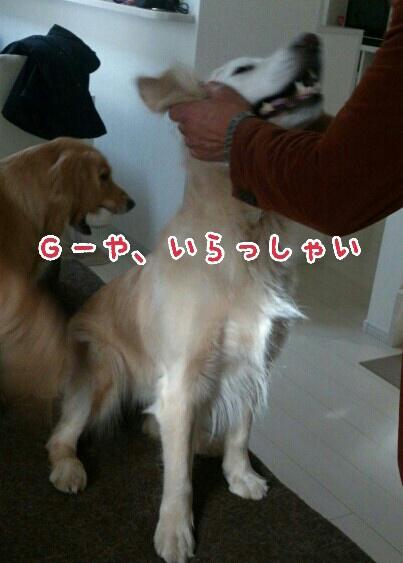 b0306466_143848.jpg