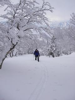 立石林道から鷲ヶ岳(東面滑降)_e0064783_20260709.jpg