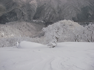 立石林道から鷲ヶ岳(東面滑降)_e0064783_20262591.jpg