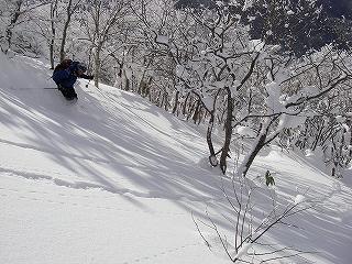 立石林道から鷲ヶ岳(東面滑降)_e0064783_20275741.jpg