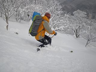立石林道から鷲ヶ岳(東面滑降)_e0064783_22255633.jpg