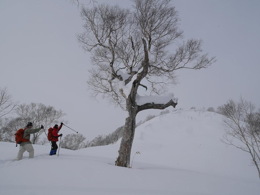 1月13日、オコタンペ山_f0138096_16344231.jpg