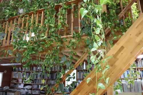 大窓花園町の家:階段手摺_e0054299_1253735.jpg