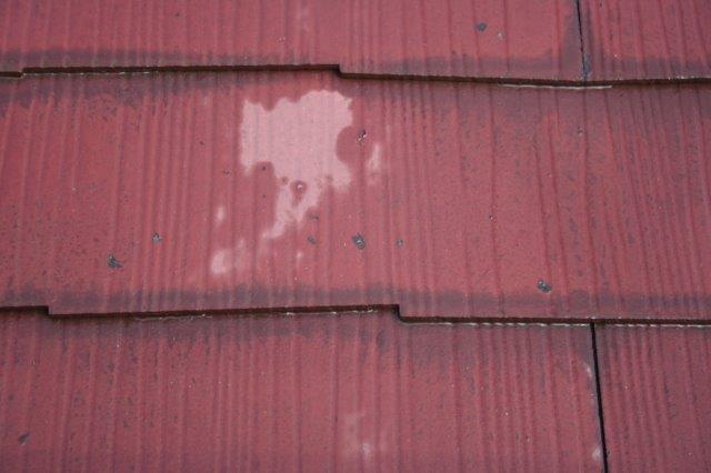 アパートの塗替えを始めています_e0207151_1230914.jpg