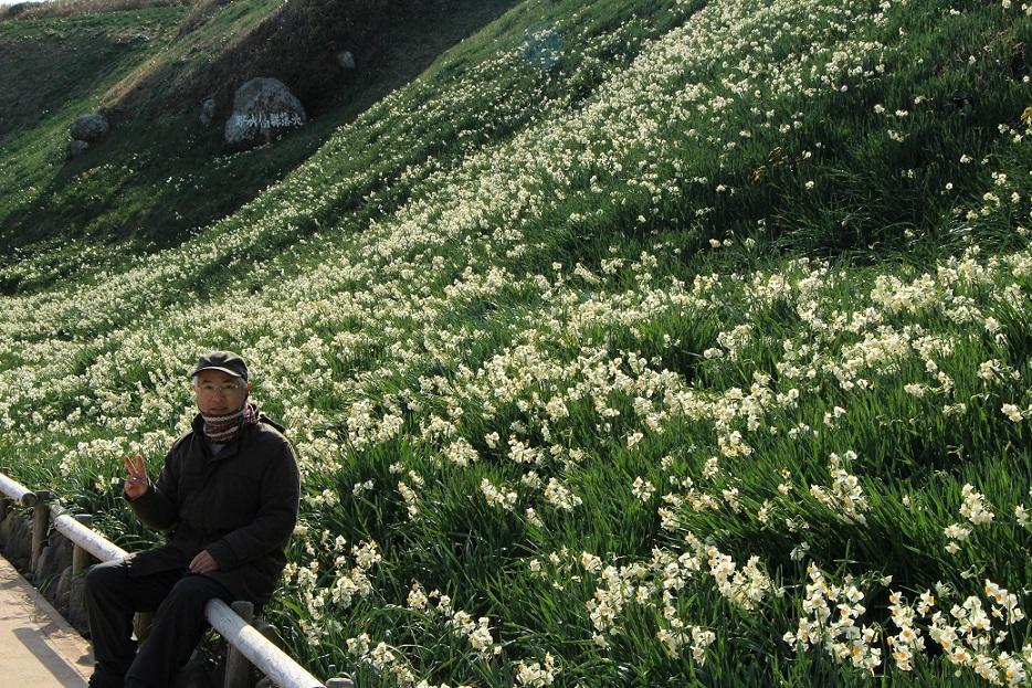 磯の香りに水仙の香りが溶けて  ~爪木崎~_a0107574_21093003.jpg