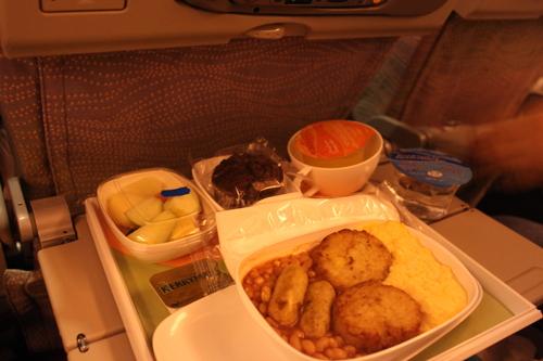 ドバイへの旅(6)―エミレーツ航空と空港と交通_e0123104_7105110.jpg