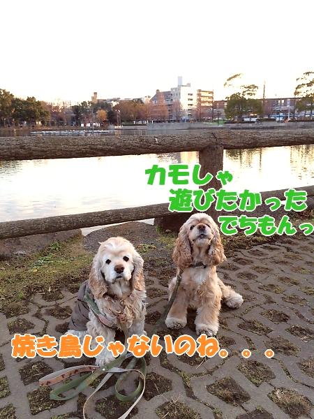 b0067012_0275989.jpg