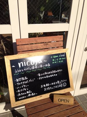 nicoyaのご紹介_c0207638_3372373.jpg
