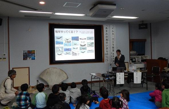イルカ・クジラ教室~奄美編~_f0062839_19104365.jpg
