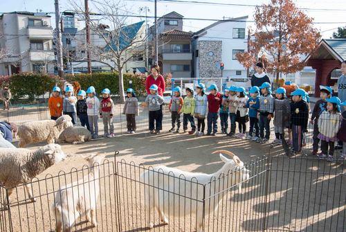 移動動物園_e0209845_9443928.jpg