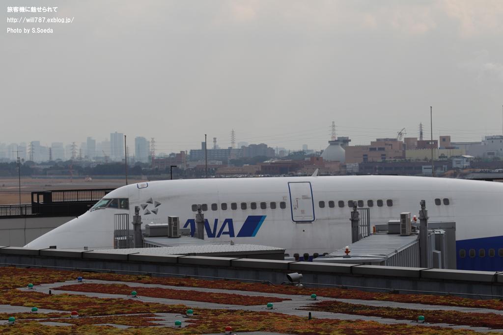 747伊丹イベント 伊丹が最も沸いた日#3_d0242350_2071926.jpg