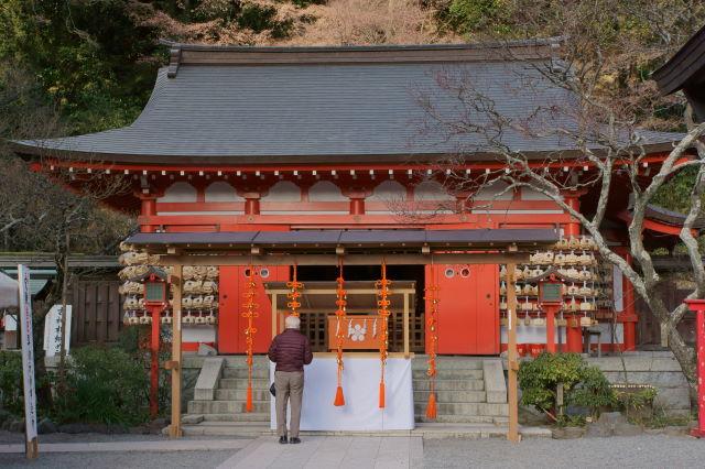 木漏れ日射す神社にて_a0257652_1711362.jpg