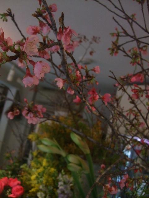 オークリーフ(春の花木に忘れな草)_f0049672_175015.jpg