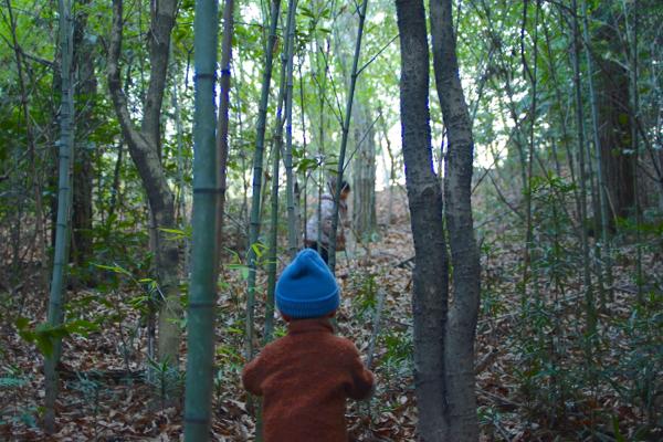 森の冒険_f0120395_10525444.jpg