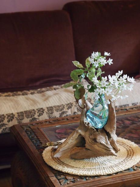 花を買ったら・・_a0037910_11374986.jpg