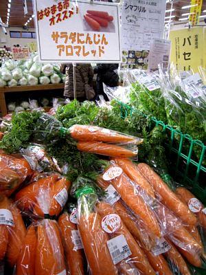 今日のおすすめ野菜_c0141652_1884882.jpg