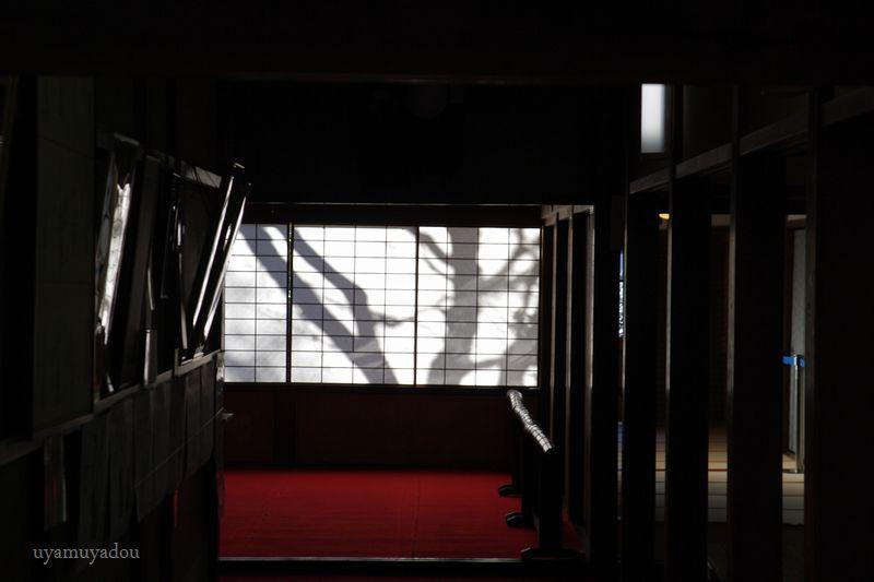 冬の京都・雪の曼殊院 #1_a0157263_19585629.jpg