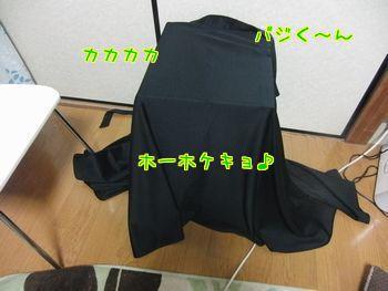 f0196665_1114569.jpg