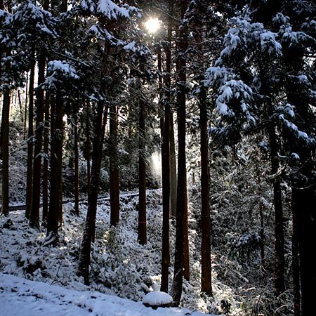 雪と青空_b0226846_2133662.jpg