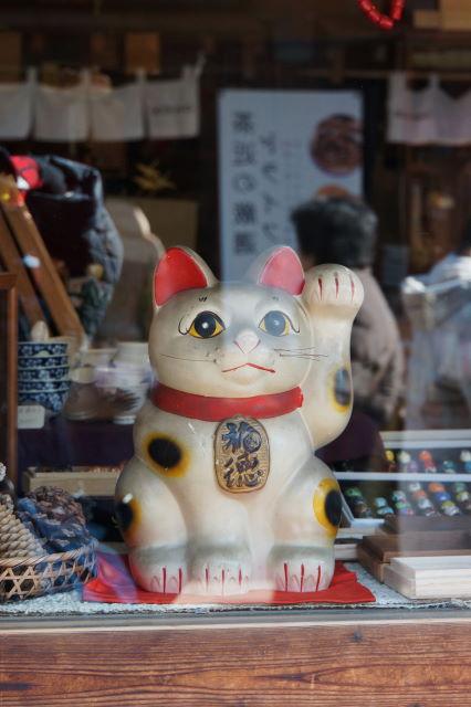 猫さんを探して_a0257652_16535751.jpg