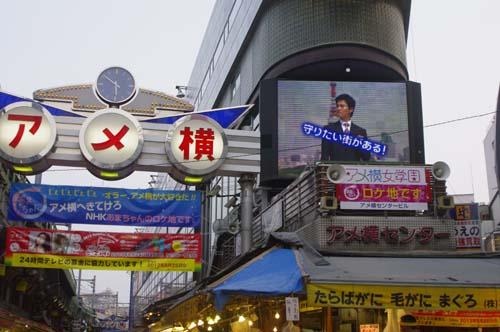 トーハク(東博)で見たこと_f0211178_18185952.jpg