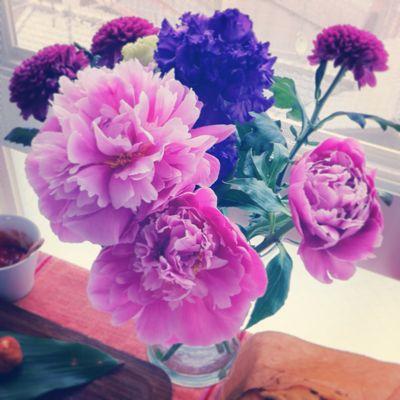 Flower_a0167912_16251158.jpg