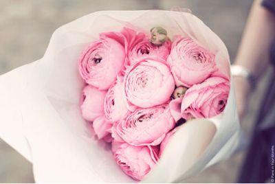 Flower_a0167912_16251253.jpg