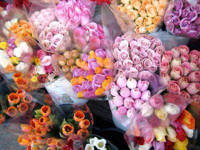 Flower_a0167912_16251641.jpg