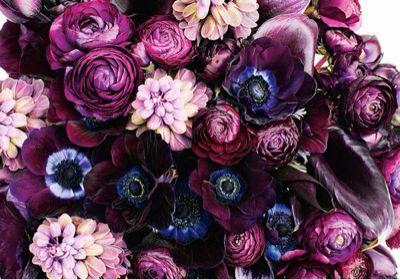 Flower_a0167912_1625217.jpg