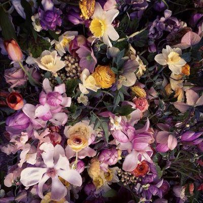 Flower_a0167912_1625243.jpg