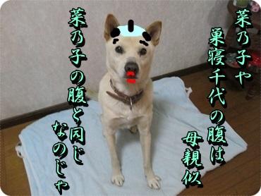 b0151748_20340044.jpg
