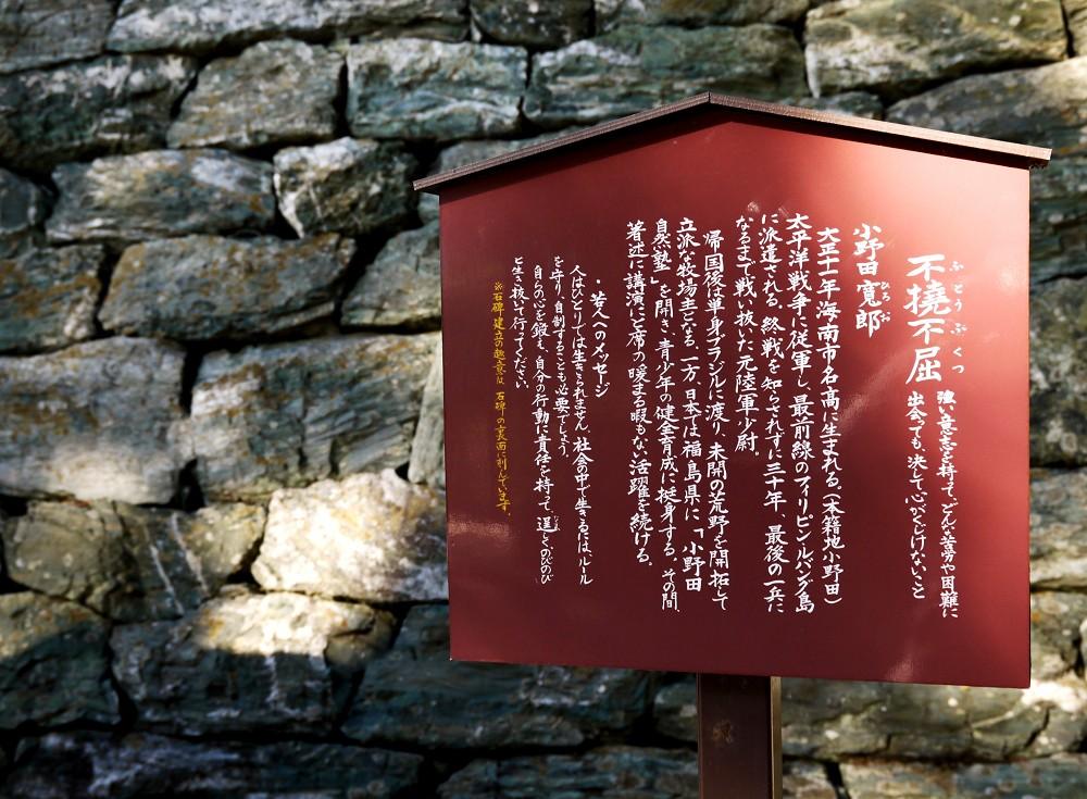 和歌山便り_b0093754_14192268.jpg