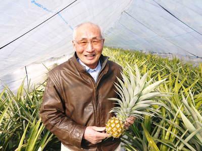 熊本産パイナップル!その2「パイナップルの花と収穫のお話」_a0254656_16222714.jpg