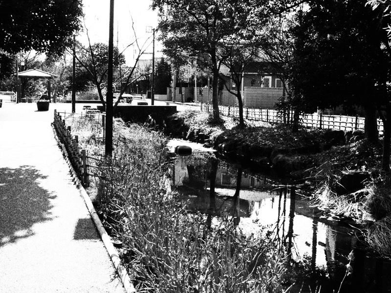 近所の公園をモノクロ散歩_b0021375_1332088.jpg
