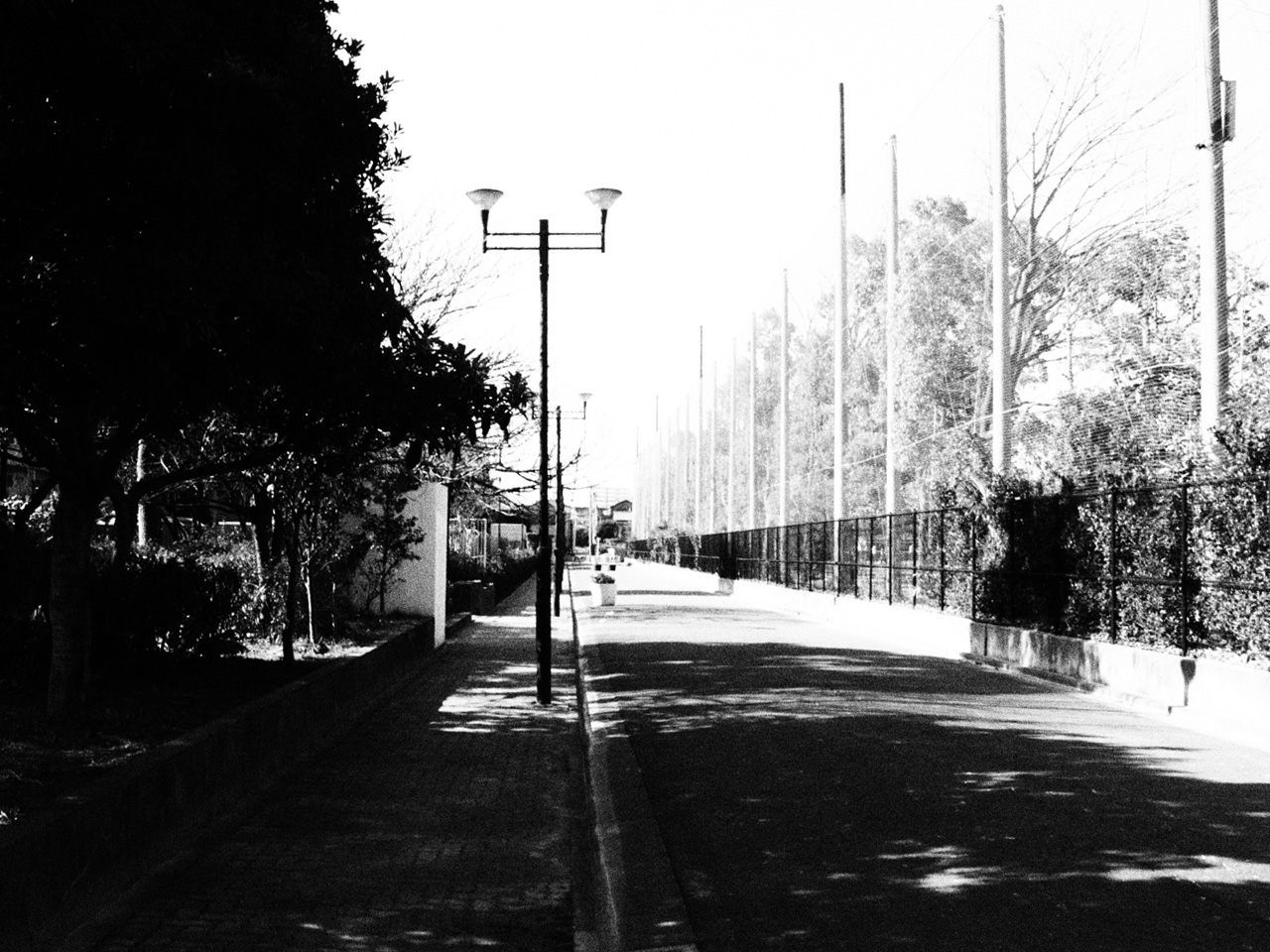 近所の公園をモノクロ散歩_b0021375_133543.jpg