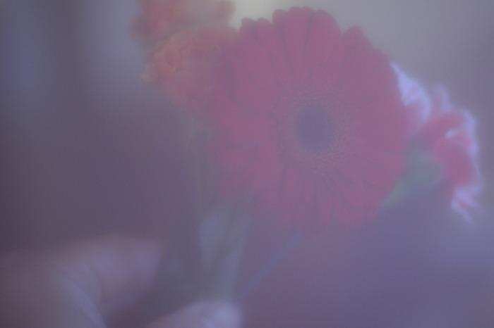 a0214096_18151026.jpg