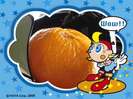 気分を変えて:Den.vexillarius(オレンジ)_d0007501_3292122.jpg