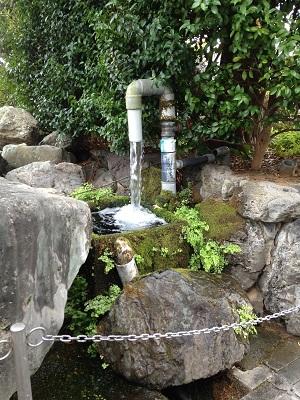 おとなりの湧水地 + 温泉_b0228113_14150734.jpg