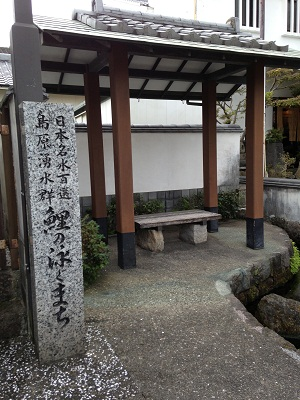 おとなりの湧水地 + 温泉_b0228113_14223167.jpg