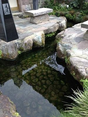 おとなりの湧水地 + 温泉_b0228113_14233517.jpg