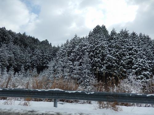 雪の新名神高速道路_f0223914_22313157.jpg