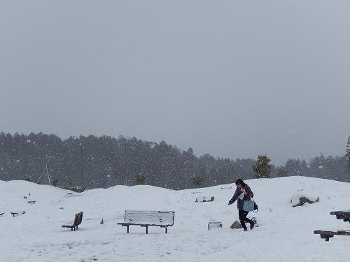 雪の新名神高速道路_f0223914_2232385.jpg