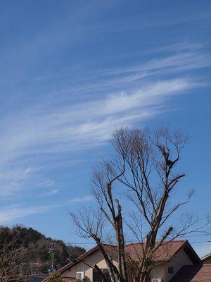 2013年3月の空_f0193425_23193034.jpg