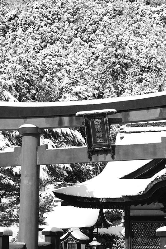 雪の琵琶湖_c0211429_22260756.jpg