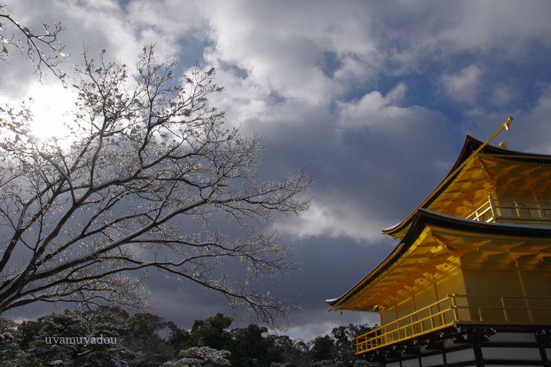 京都・冬の時・雪の金閣寺_a0157263_15203454.jpg