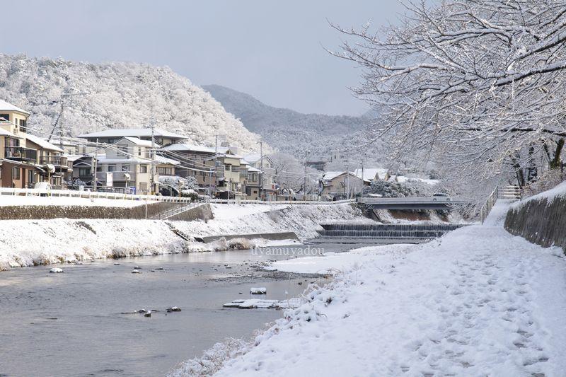 京都・冬の時・雪の金閣寺_a0157263_15205477.jpg