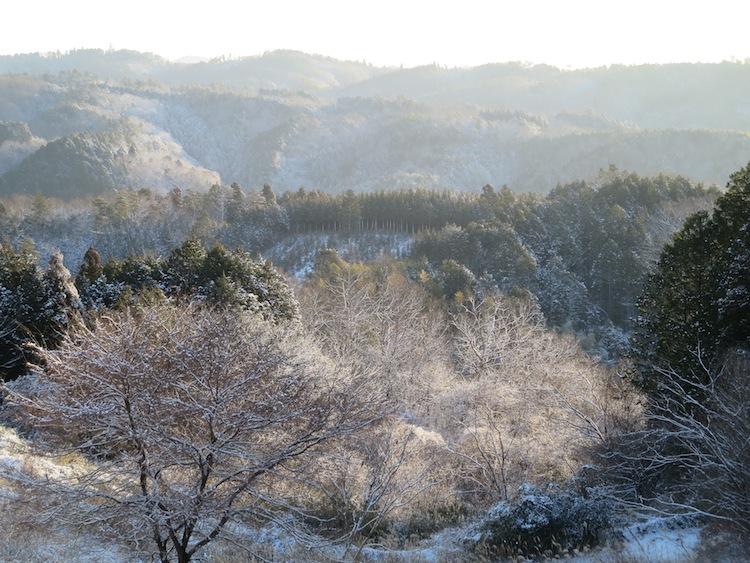雪の朝_d0231263_21172022.jpg