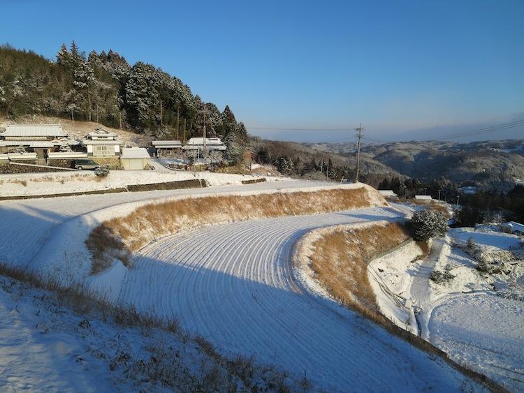雪の朝_d0231263_21192362.jpg