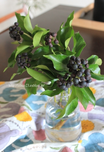 ・花とショコレ。_d0245268_15413353.jpg