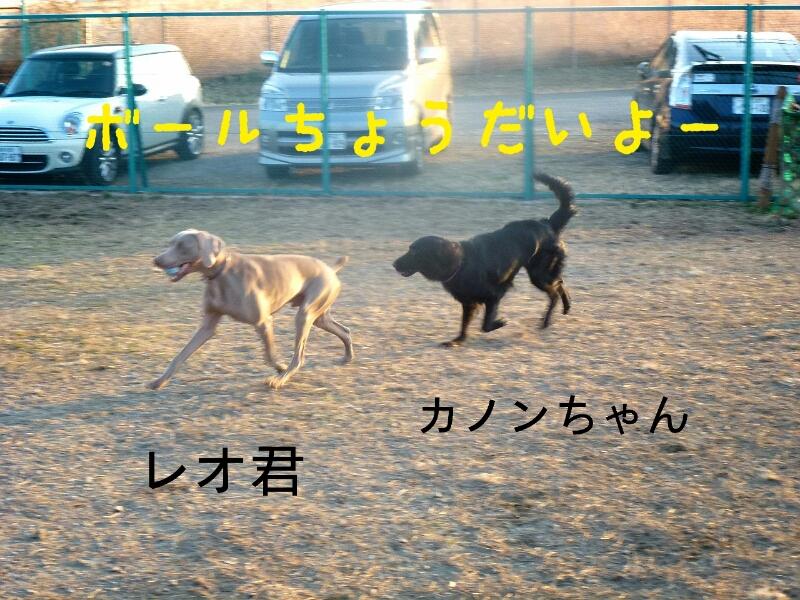 f0230380_2321251.jpg